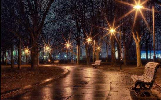 đèn led cao áp chiếu sáng công viên