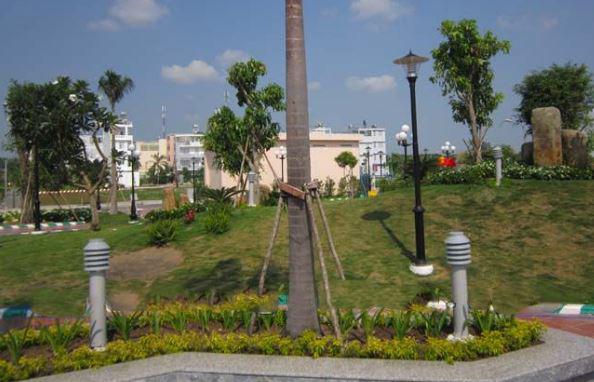 đèn tran trí sân vườn nấm cây thông